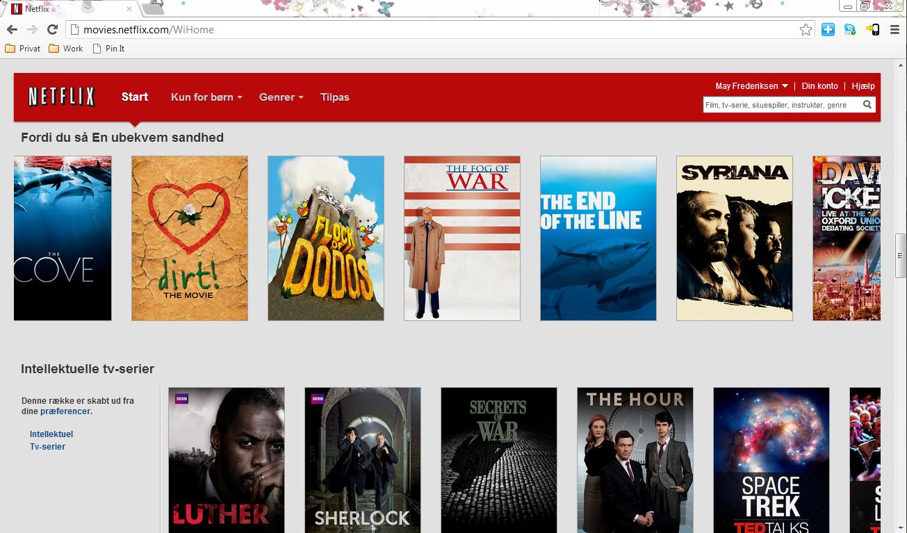 Ingen Netflix