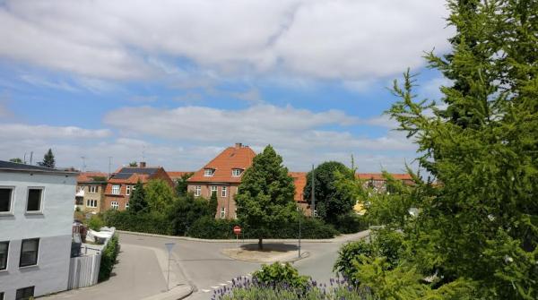 oneplus 3 kameratest landskab