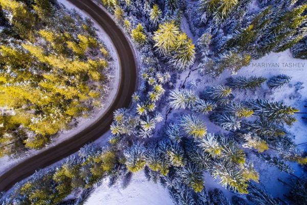 flottest drone billede 2016