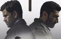 mest sete danske film 2016